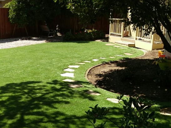 Artificial Grass Photos: Grass Carpet Rockport, Texas Landscape Ideas, Backyard Landscaping