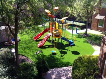 Artificial Grass Photos: Grass Carpet Rollingwood, Texas Garden Ideas, Commercial Landscape