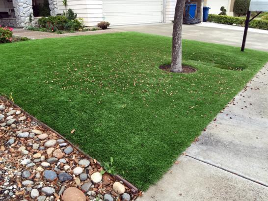 Artificial Grass Photos: Grass Installation Blue Berry Hill, Texas Garden Ideas, Front Yard