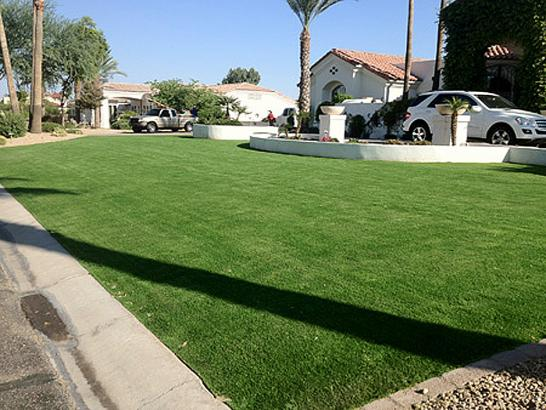Artificial Grass Photos: Grass Turf Moulton, Texas Landscape Ideas, Front Yard Landscaping Ideas