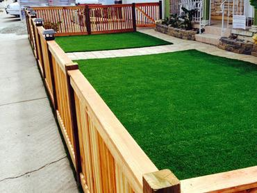 Artificial Grass Photos: Green Lawn Concepcion, Texas Lawn And Garden, Front Yard Landscaping Ideas