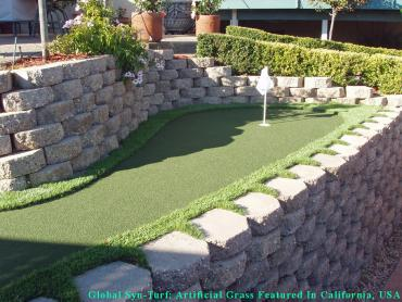 Installing Artificial Grass Castle Hills, Texas Landscaping, Backyard Landscape Ideas artificial grass