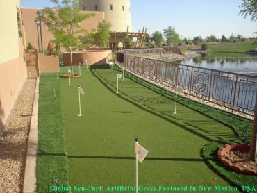Lawn Services Alamo Heights, Texas Putting Green Grass, Backyard Design artificial grass