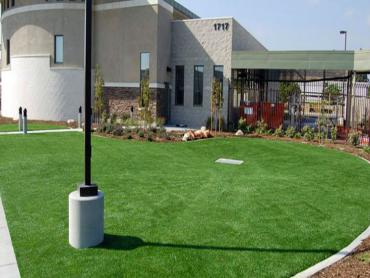 Artificial Grass Photos: Lawn Services Larga Vista, Texas Landscape Design, Commercial Landscape