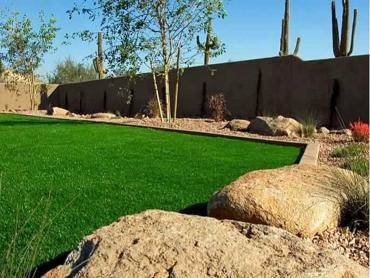 Artificial Grass Photos: Lawn Services Lorena, Texas Home And Garden, Backyard Design