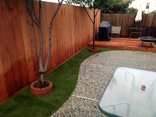 Artificial Grass Photos: Lawn Services Saint Paul, Texas Design Ideas, Backyard