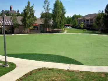 Artificial Grass Photos: Outdoor Carpet Morgans Point Resort, Texas Indoor Putting Greens, Commercial Landscape