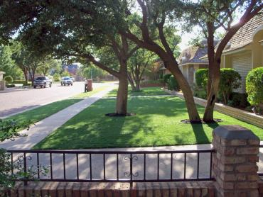 Artificial Grass Photos: Plastic Grass Brackettville, Texas Landscape Photos, Landscaping Ideas For Front Yard
