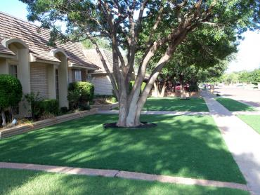 Artificial Grass Photos: Plastic Grass Mason, Texas Backyard Deck Ideas, Landscaping Ideas For Front Yard