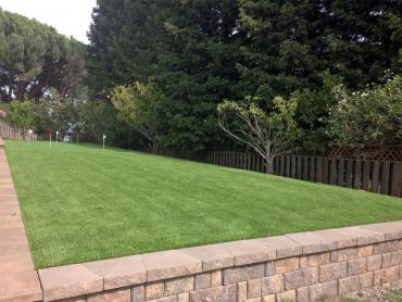 Artificial Grass Photos: Synthetic Grass Amistad Acres, Texas Diy Putting Green, Backyards