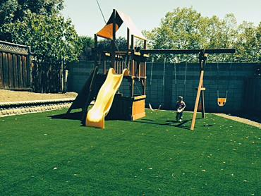 Artificial Grass Photos: Synthetic Grass Cost Four Points Colonia, Texas Landscaping Business, Backyard