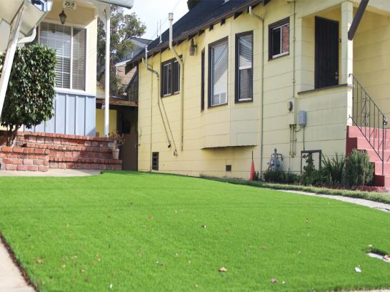 Artificial Grass Photos: Synthetic Grass Cost Hornsby Bend, Texas Landscape Design, Small Front Yard Landscaping