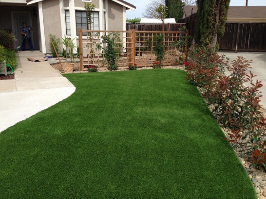 Artificial Grass Photos: Synthetic Grass Cost North San Pedro, Texas Design Ideas, Front Yard Landscape Ideas