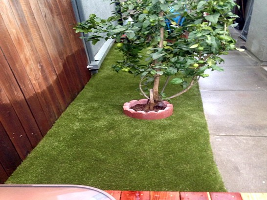 Artificial Grass Photos: Synthetic Grass Cost Woodsboro, Texas Lawn And Landscape, Backyard Landscape Ideas