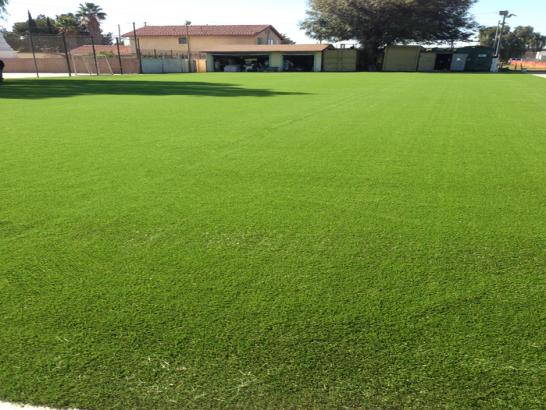 Artificial Grass Photos: Synthetic Grass Luling, Texas Rooftop, Recreational Areas