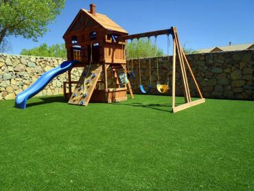 Artificial Grass Photos: Synthetic Lawn Port Lavaca, Texas City Landscape, Backyard Designs