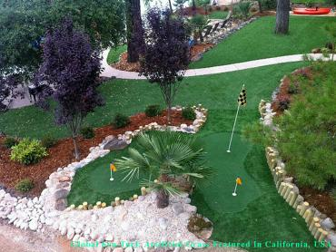 Synthetic Lawn San Antonio, Texas Artificial Putting Greens, Backyard Design artificial grass