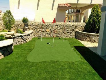 Artificial Grass Photos: Synthetic Turf Holiday Beach, Texas Landscaping Business, Backyard