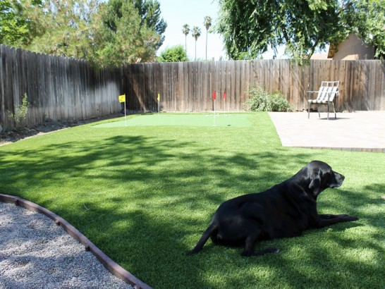Artificial Grass Photos: Synthetic Turf Rancho Alegre, Texas Dogs, Small Backyard Ideas