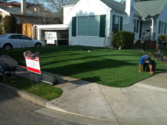 Artificial Grass Photos: Synthetic Turf Supplier Balcones Heights, Texas Lawns, Front Yard
