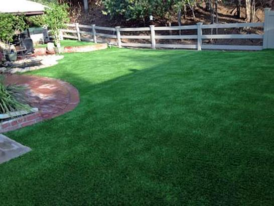 Artificial Grass Photos: Synthetic Turf Supplier Fowlerton, Texas Pet Turf, Backyard Designs