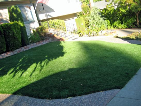 Artificial Grass Photos: Synthetic Turf Supplier Greatwood, Texas Garden Ideas, Front Yard Landscape Ideas
