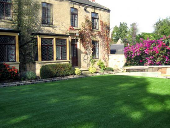 Artificial Grass Photos: Synthetic Turf Supplier Niederwald, Texas Design Ideas, Front Yard Landscaping