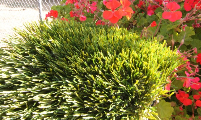 Double S-72 syntheticgrass Artificial Grass San Antonio, Texas
