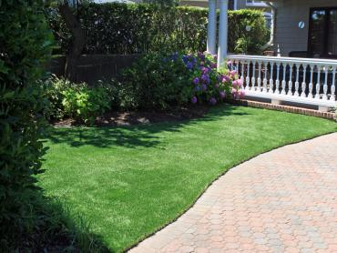 Artificial Grass Photos: Turf Grass Canyon Lake, Texas Lawn And Garden, Front Yard