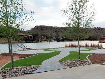 Artificial Grass Photos: Turf Grass Garden Ridge, Texas Gardeners