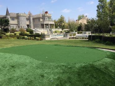 Artificial Grass Photos: Turf Grass Northcliff, Texas Landscaping Business, Front Yard Ideas