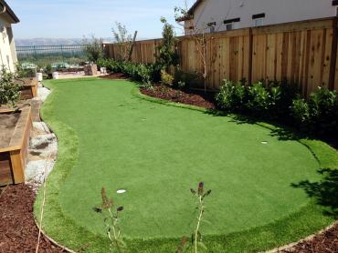Artificial Grass Photos: Turf Grass Realitos, Texas Rooftop, Backyard Design