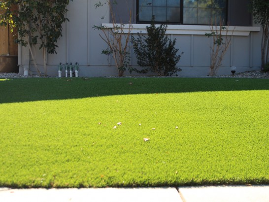 Artificial Grass Photos: Turf Grass San Saba, Texas Landscape Ideas, Front Yard