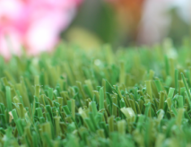 Artificial Grass With Superior Durability